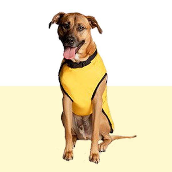 Raincoat Supreme in Yellow or White